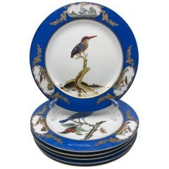 Set of Six Blue and White Bird Plates