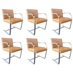 Set of Six Brno Chairs by Mies van der Rohe