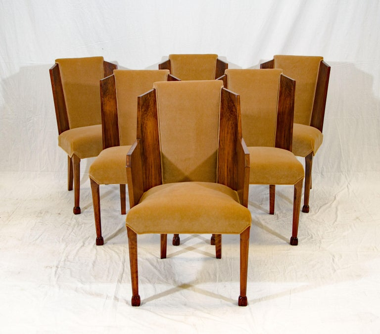 A gorgeous set of six French Art Deco dining chairs in burl walnut and light brown cotton velvet upholstery. These chairs would make a statement in a formal Art Deco dining room but would look great with different styles of tables as well.  The