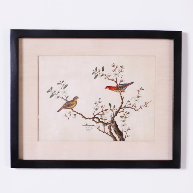 Set of Six Chinese Watercolors of Song Birds For Sale 4