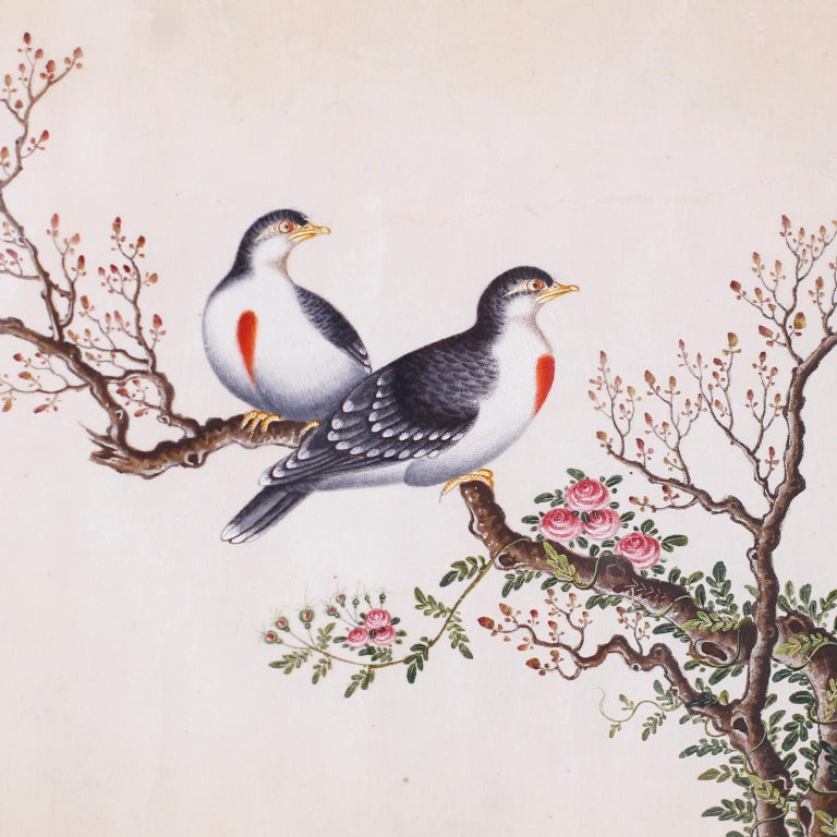 Set of Six Chinese Watercolors of Song Birds For Sale 7