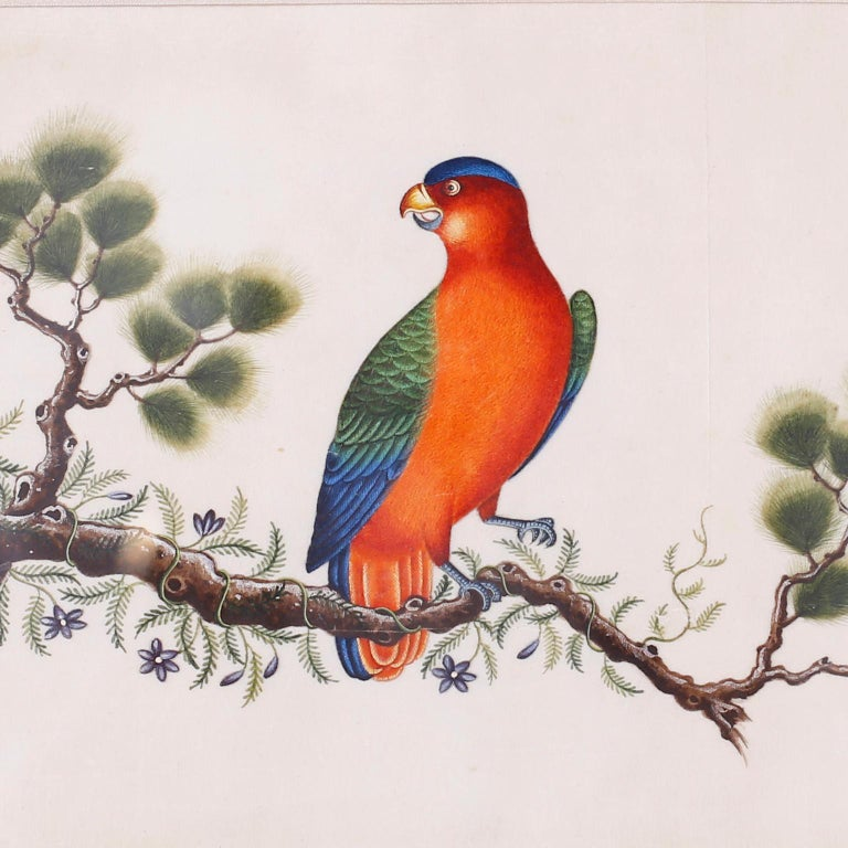 20th Century Set of Six Chinese Watercolors of Song Birds For Sale