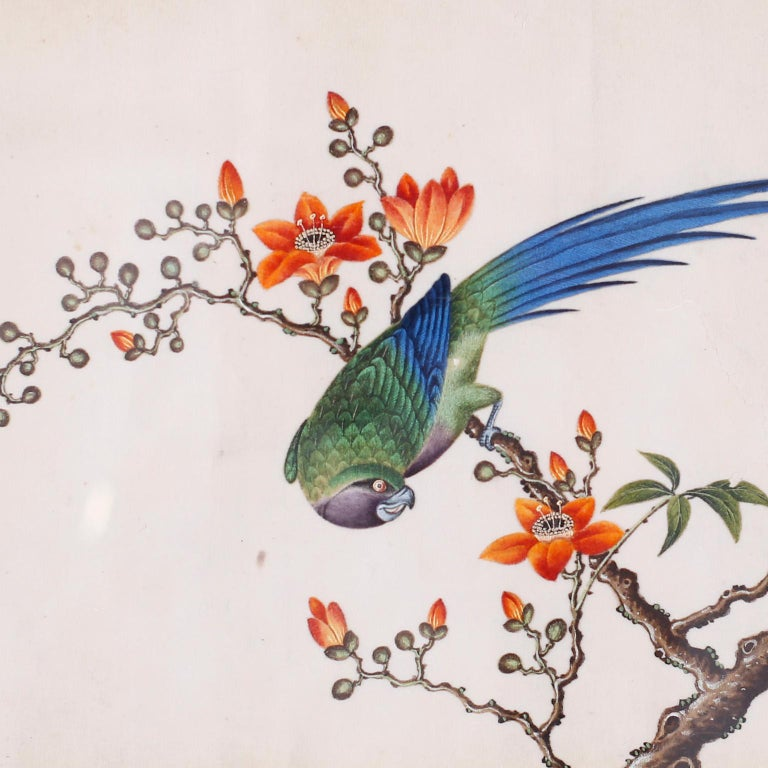 Set of Six Chinese Watercolors of Song Birds For Sale 1