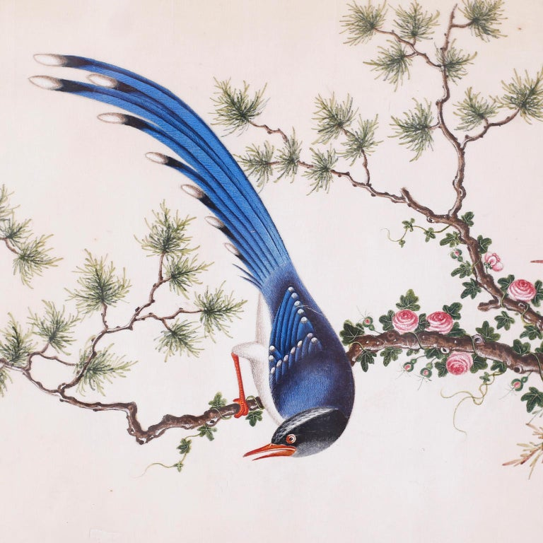 Set of Six Chinese Watercolors of Song Birds For Sale 3