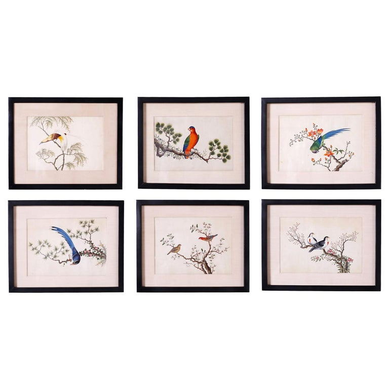 Set of Six Chinese Watercolors of Song Birds For Sale