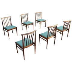 Set of Six Danish Solid Rosewood Dining Chairs with Turquoise Color Seat, 1960s