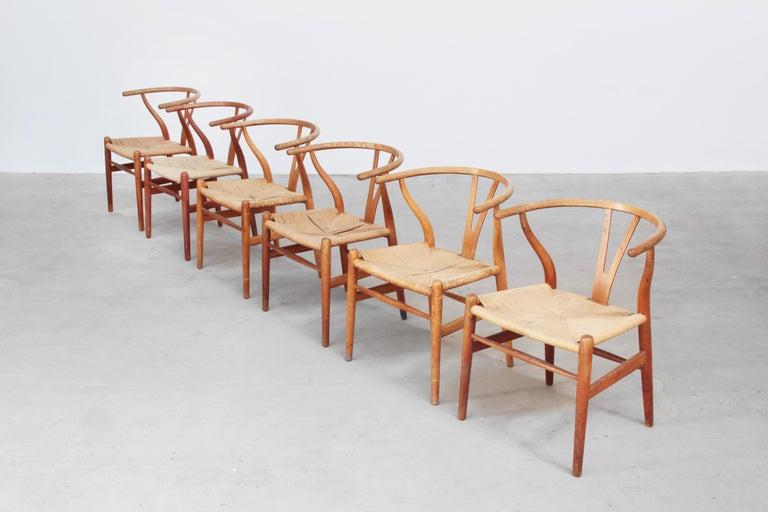 Set of Six Danish Wishbone Chairs CH 24 by Hans J. Wegner for Carl Hansen Oak For Sale 1