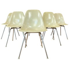 Set of Six Eames for Herman Miller DSX and DSG Side Chairs in Parchment, 1959