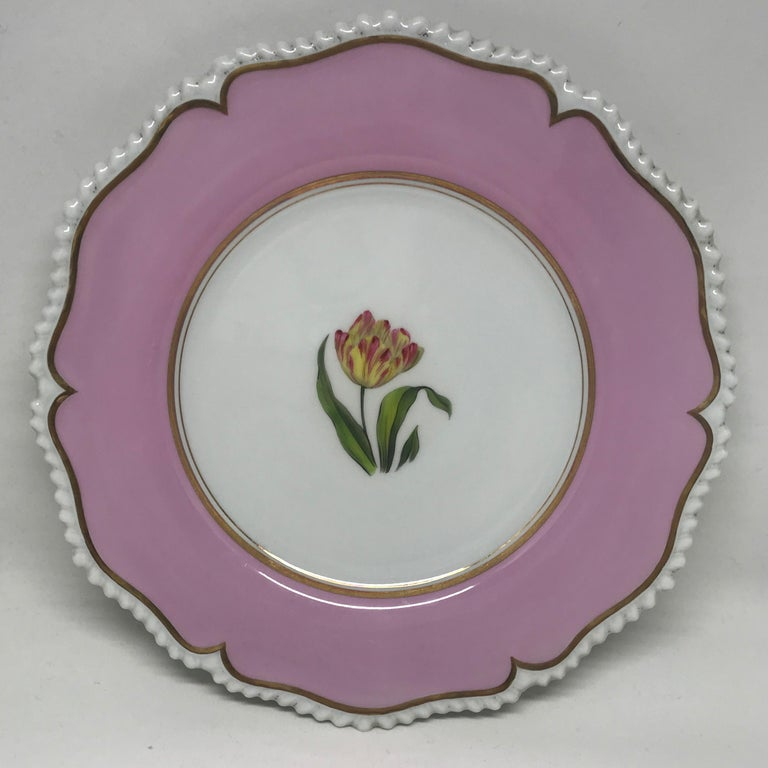 Set of six pink floral plates. Botanical painted dishes with pale fuchsia border bordered with gilt bands and white rope twist lobed edge; specimen flowers identified on the reverse include: iris, hepatica, anemone, poppy, tulip, and larkspur. Red