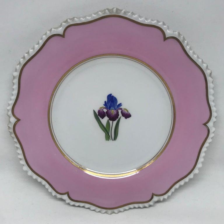 Porcelain Set of Six Pink Floral Plates For Sale