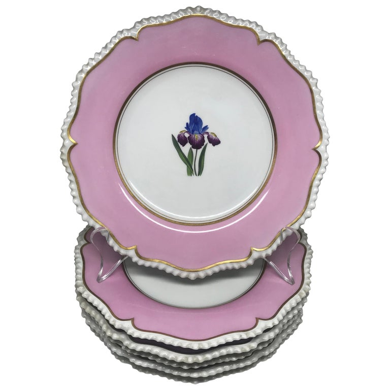 Set of Six Pink Floral Plates For Sale