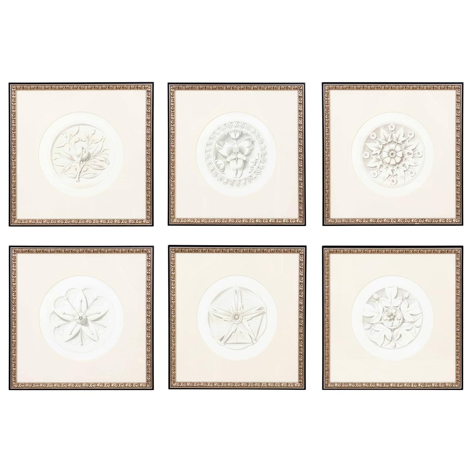 """Set of Six French """"Fiore Ornementale"""" Rosettes Botanical Prints Framed"""