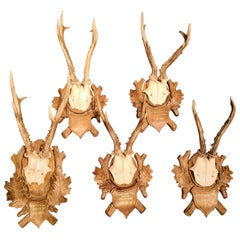Set of Six Hunting Plaques, Austria
