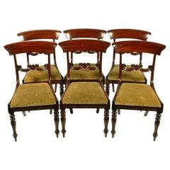 Set of Six Mahogany Chairs, 19th Century