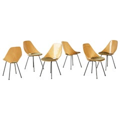Set of Six Medea Chairs by Vittorio Nobili for Fratelli Tagliabue, Italy, 1950s