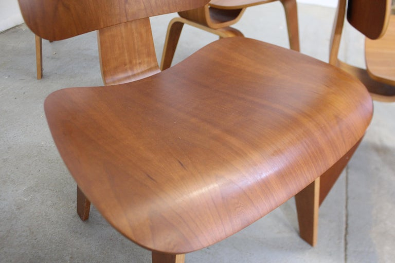 Set of Six Mid-Century Modern Eames Herman Miller Molded Plywood Dining Chairs For Sale 5
