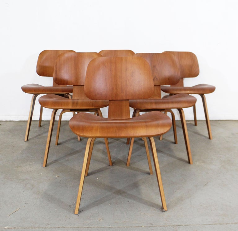 Contemporary Set of Six Mid-Century Modern Eames Herman Miller Molded Plywood Dining Chairs For Sale