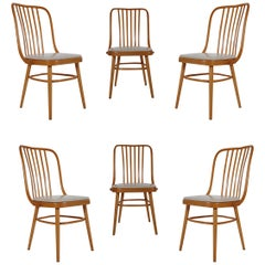 Set of Six Mid-Century Modern Spindle Back Dining Chairs in Maple after Thonet