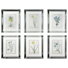 Set of Six Mirror Framed Botanical Prints