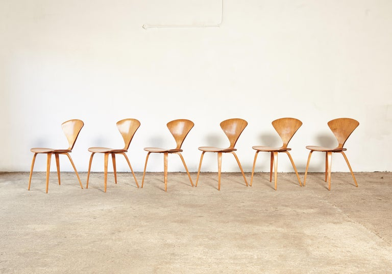 20th Century Set of Six Norman Cherner Dining Chairs, Plycraft, USA, 1960s For Sale
