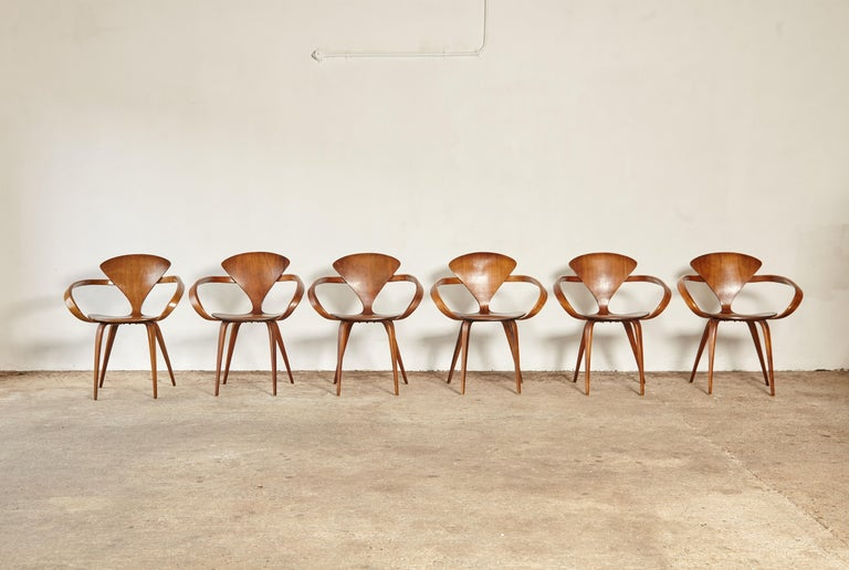 Mid-Century Modern Set of Six Norman Cherner Pretzel Dining Chairs, Made by Plycraft, USA, 1960s For Sale