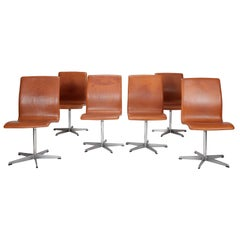 Set of Six Oxford Chairs with Original Leather, Designed by Arne Jacobsen 1962