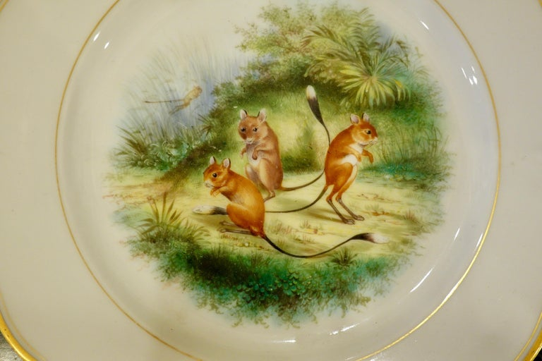 Set of Six Paris Porcelain Fruit Plates with Hand-Painted Scenes of Animals For Sale 6