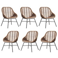 Set of Six Rattan and Black Metal Armchairs Midcentury Style