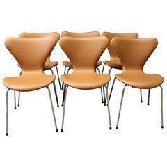 Set of Six Series 7 Chairs, Model 3107, by Arne Jacobsen and Fritz Hansen