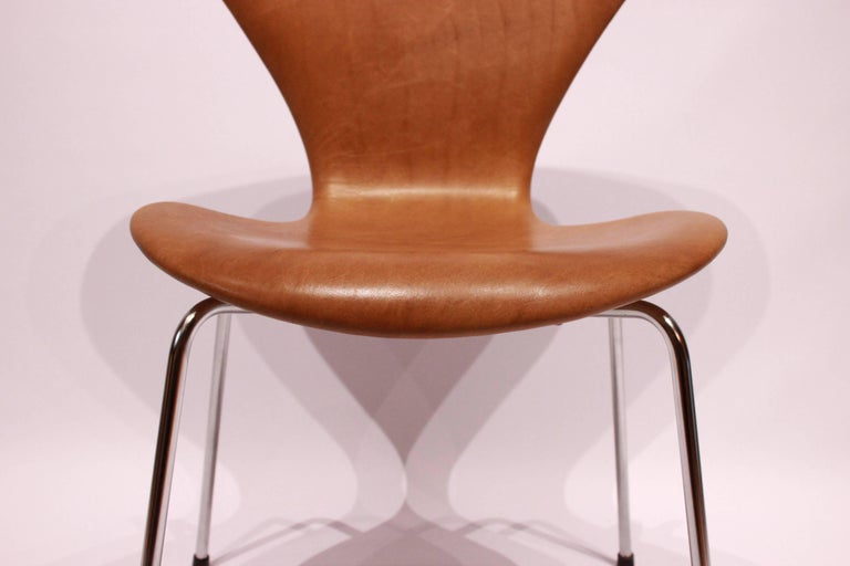Set of Six, Seven Chairs Model 3107 by Arne Jacobsen and Fritz Hansen In Good Condition For Sale In Lejre, DK