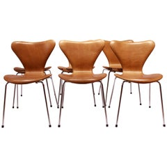 Set of Six, Seven Chairs Model 3107 by Arne Jacobsen and Fritz Hansen