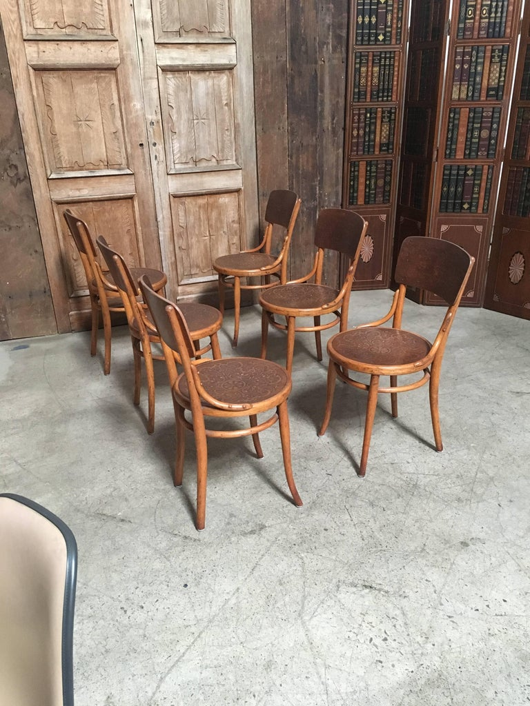 Set of Six Thonet Bentwood Dining Chairs For Sale 1