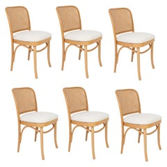 Set of Six White Boucle Thonet Wood Rattan Chairs, 1960s