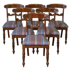 Set of Six William IV Mahogany Chairs