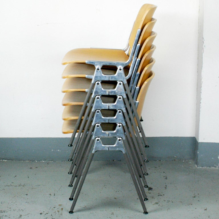 Set of six iconic DSC 106 stacking chairs, designed 1965 by Giancarlo Piretti for Castelli. This set features bright wooden seats and backs and grey legs., they are in very nice condition with a few signs of wear due to their age. Perfect and
