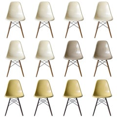 Set of ten Eames DSW dining chairs Herman Miller, USA - Tania