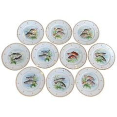 Set of Ten Hand Painted Fish Dinner Plates from Limoges