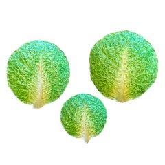 Set of Three Italian Majolica Napoli Green Lettuceware / Cabbage Plates Unmarked