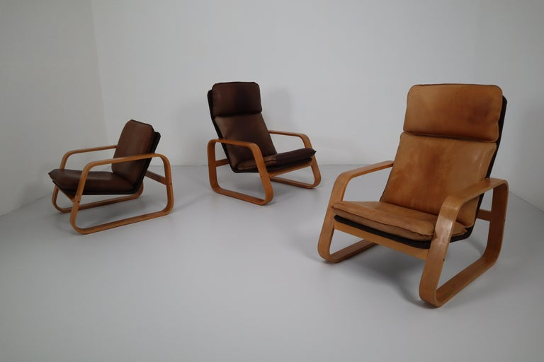 Set of Three Lounge Chairs, Patinated Leather and Bentwood, France, 1970s For Sale 7