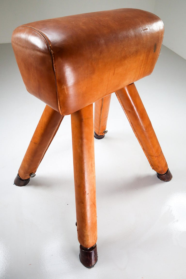 Set of Three Patinated Cognac Leather Covered Beechwood Gym Horses, 1950s For Sale 4
