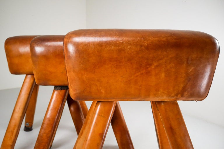 Set of Three Patinated Cognac Leather Covered Beechwood Gym Horses, 1950s For Sale 5