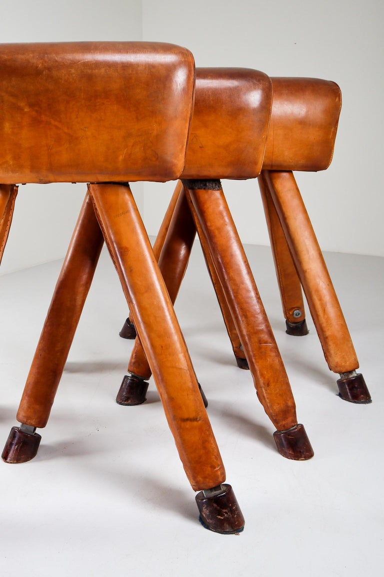 Set of Three Patinated Cognac Leather Covered Beechwood Gym Horses, 1950s For Sale 6