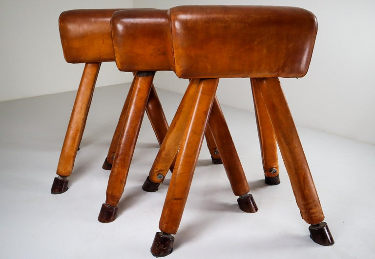 Set of three patinated cognac leather covered beechwood gym horses, circa 1950. Salvaged from an old gym, this handsome piece of equipment is weighted for stability and has horse shaped hoof feet. Lots of patina, imperfections and overall charm and
