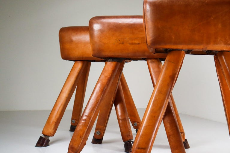 Mid-Century Modern Set of Three Patinated Cognac Leather Covered Beechwood Gym Horses, 1950s For Sale