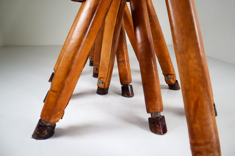 Set of Three Patinated Cognac Leather Covered Beechwood Gym Horses, 1950s In Good Condition For Sale In Almelo, NL