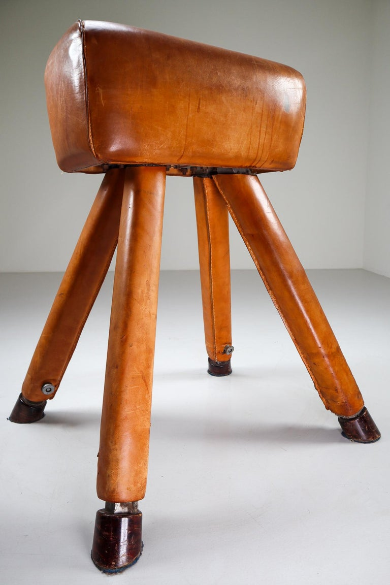 Mid-20th Century Set of Three Patinated Cognac Leather Covered Beechwood Gym Horses, 1950s For Sale