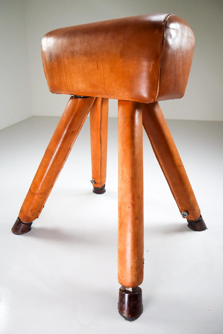 Set of Three Patinated Cognac Leather Covered Beechwood Gym Horses, 1950s For Sale 1