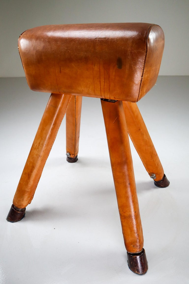 Set of Three Patinated Cognac Leather Covered Beechwood Gym Horses, 1950s For Sale 2