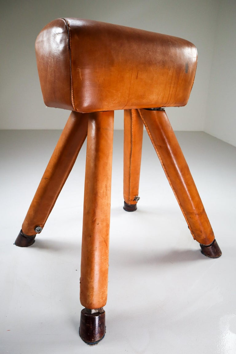 Set of Three Patinated Cognac Leather Covered Beechwood Gym Horses, 1950s For Sale 3