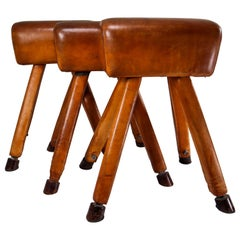 Set of Three Patinated Cognac Leather Covered Beechwood Gym Horses, 1950s